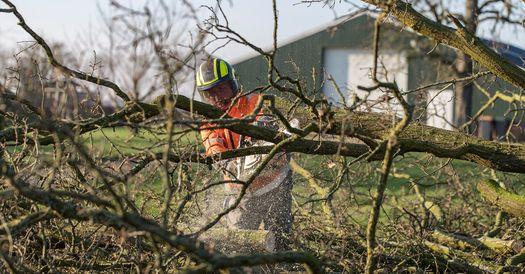 Allround boomverzorger (ETW) Zoek je een vaste baan en een nieuwe uitdaging a...